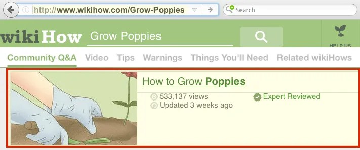 Our Answers to Poppy Questions on @WikiHow