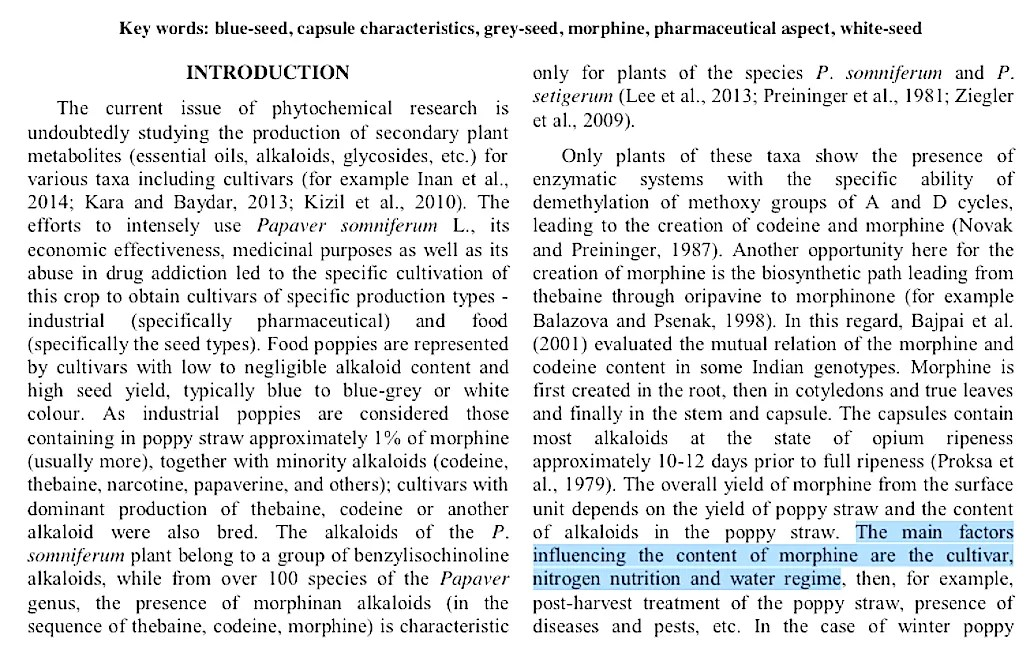 nitrogen to morphine