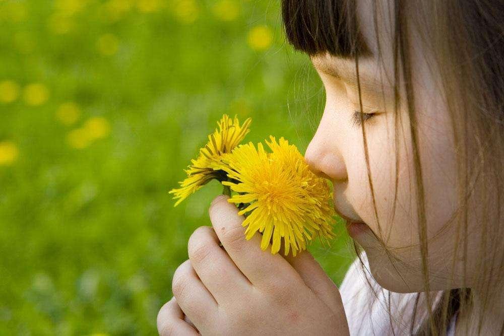 芳香療法與嗅覺