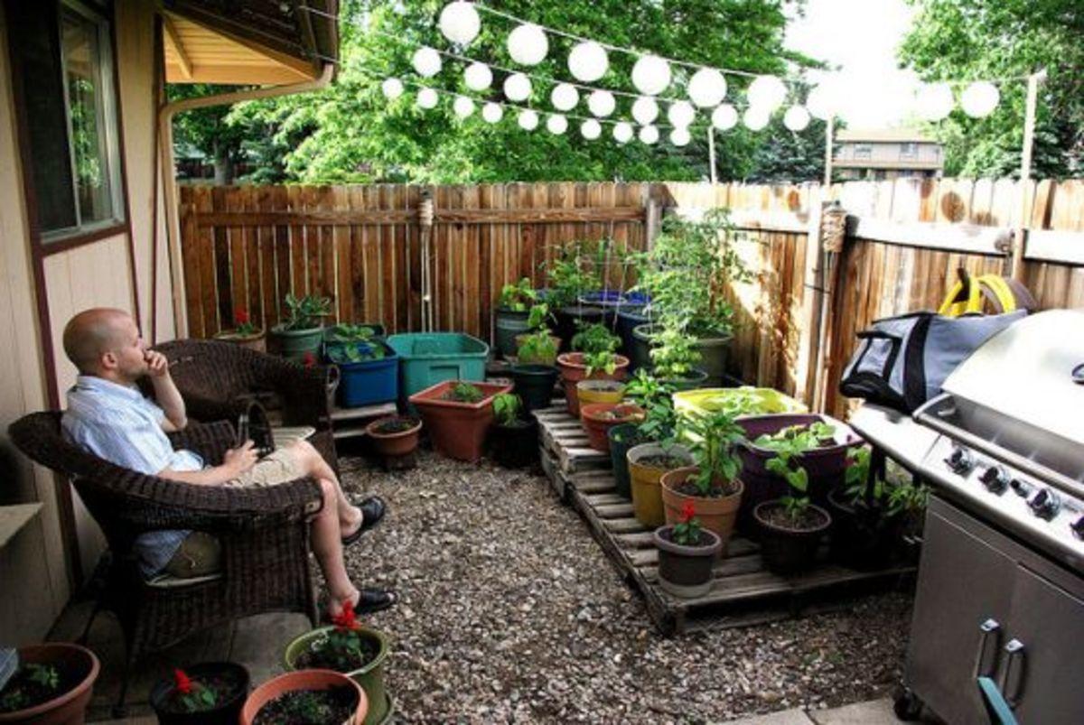 Tiny Plot, Big Bounty: 4 Small-Space Gardening