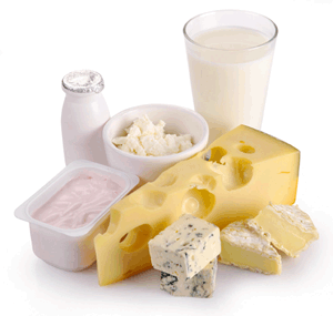 Cheese, Milk, Butter & Yoghurt