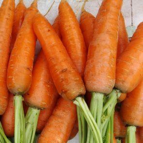 Zanahorias 500 gr.