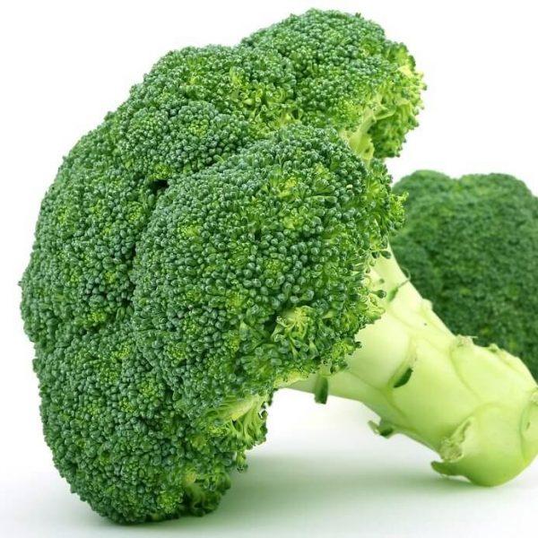 Brócoli. Unidad.