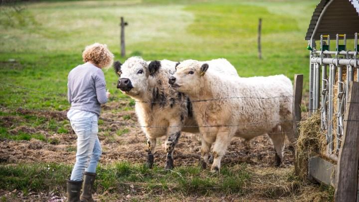 Farmer Woman