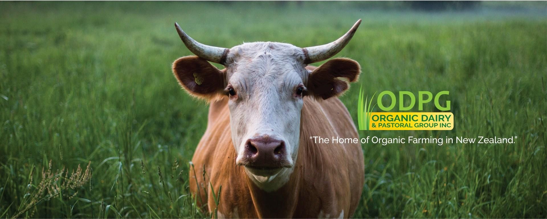 Learn organic farming in new zealand