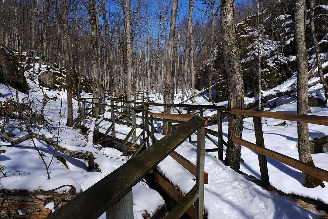 Frontenac Provincial Park - This Boardwalk Rocks!