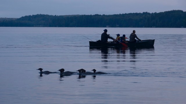 Canoeing on Upper Mazinaw Lake