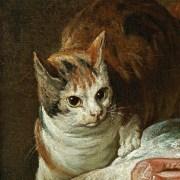 Comprare il lardo dal gatto