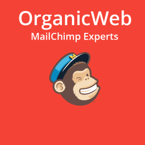 We provide Mailchimp in-house and public classes.