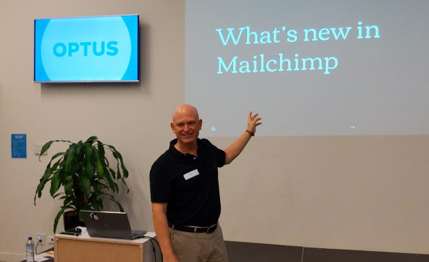 Corporate Mailchimp training and consulting