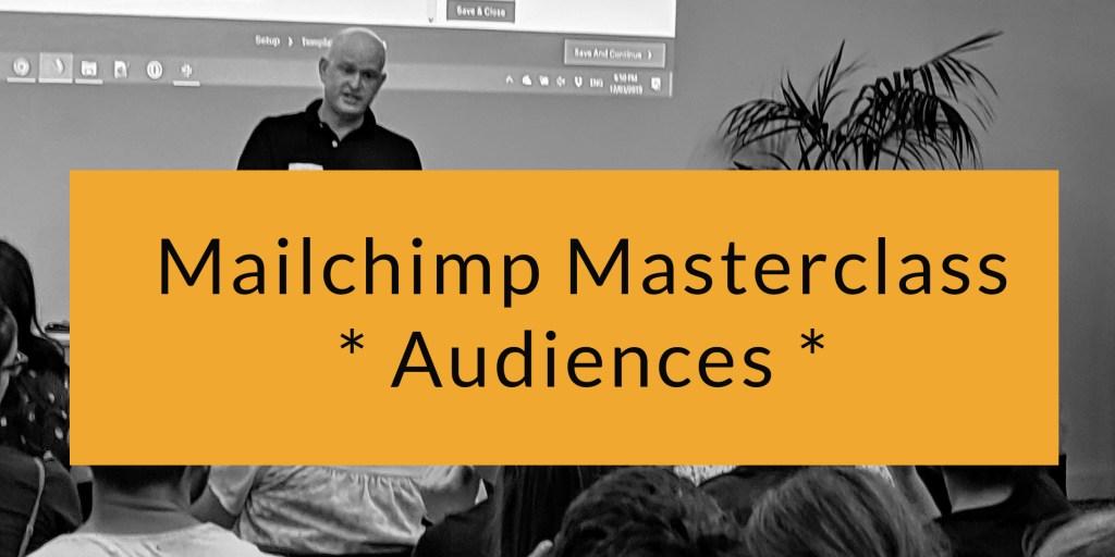 Mailchimp Audience training - online class