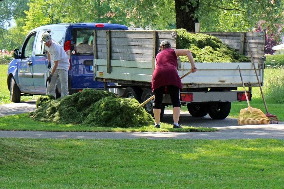 tonte de pelouse et déchets verts