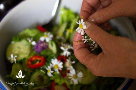 Gaensebluemchen in den Salat geben