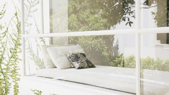 Comment entretenir ses fenêtres efficacement