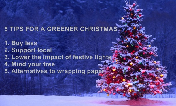 5 tips for greener christmas