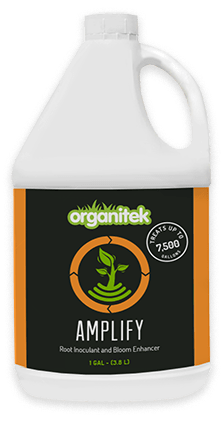 1 g amplify from Organitek