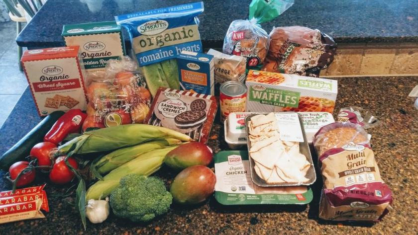 Grocery Haul on A Budget