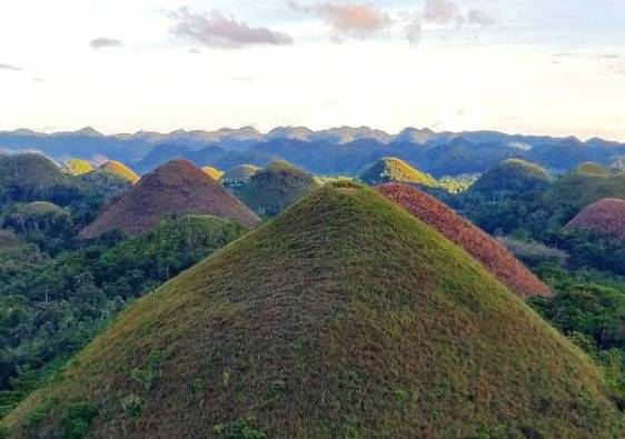 Chocolate Hills of Bohol Philippines