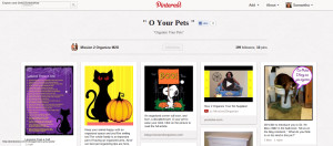 Organizing Your Pets Pinterest Board