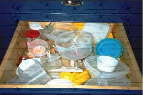 Drawer full of food storage containers