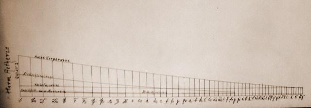 harmonika.jpg