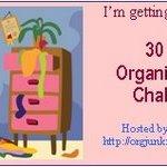 30 Day Challenge Update!