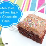 Gluten, Dairy & Egg-Free Chocolate Cake + Frosting Recipe