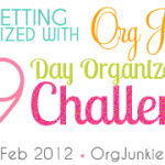 29 Day Organizing Challenge ~ 1st Progress Link Up