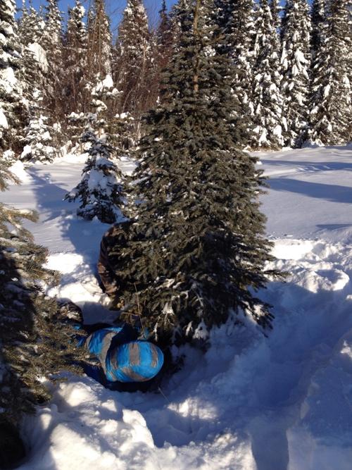 Christmas Tree Hunting 2014 4