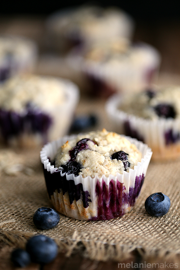 yogurt blueberry oatmeal muffins 6