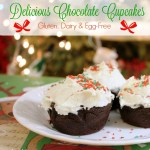 Gluten, Dairy and Egg-Free Chocolate Cupcakes + Frosting