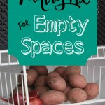 Pantry Fix for Empty Spaces