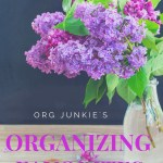 Fav Organizing Links: Declutter Tips, Organizing for Sports + more!