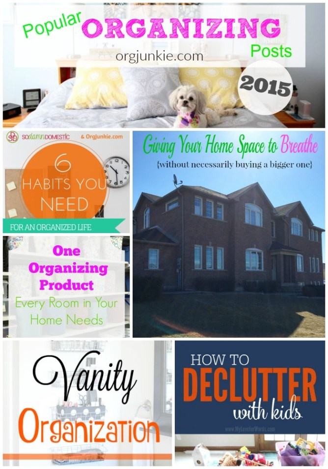 Popular Organizing Posts of 2015 at I'm an Organizing Junkie blog