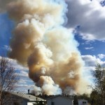 A Forest Fire, eBooks, an Organizing Purge & Sponsors too!