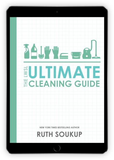 The Ultimate Cleaning Guide at I'm an Organizing Junkie blog