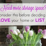 Need More Storage Space? Consider This Before Deciding to Love Your Home or List It