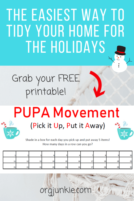Organize for the holidays with the PUPA Movement