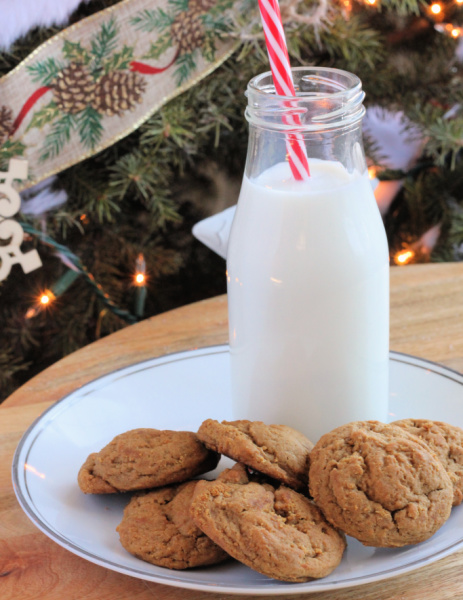 Granny's Soft Ginger Cookies - Last Minute Gift Idea with Free Printable Gift Tags at I'm an Organizing Junkie blog