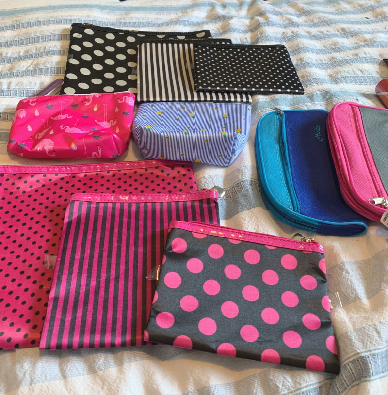 dollar store pouches