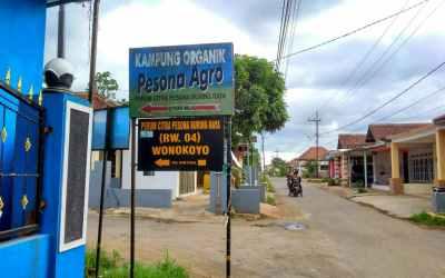 Menelisik Jejak Kampung Organik Pesona Agro Wonokoyo