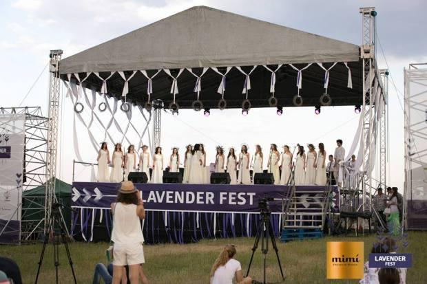 lavender fest 2