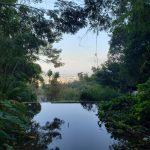 Explore orienteering in Thailand