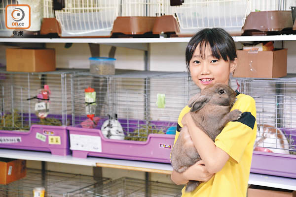 兔友喚來愛 - 東方日報