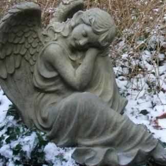 Engel Ariselle - Engel Arisella