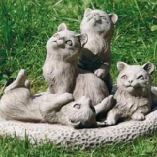 Meine Tierwelt: KATZEN