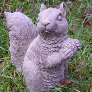 Eichhörnchen Boris mit Nuss