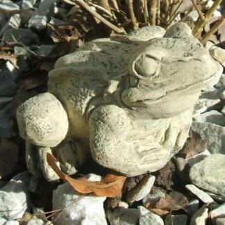 Frosch mittel