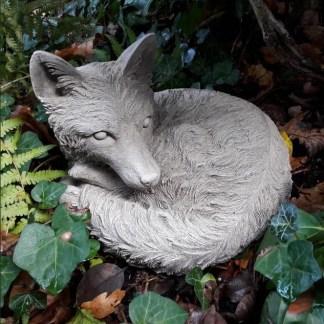 Fuchs Reinecke schlafend