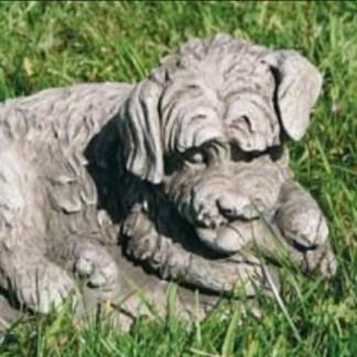 Hund Mongrel liegend